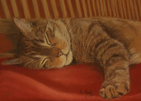 Katzenzeichnung, Katzenportrait, catart, catdrawing