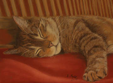 Katzenportrait Ginger in Pastell / Catportrait Ginger in pastel