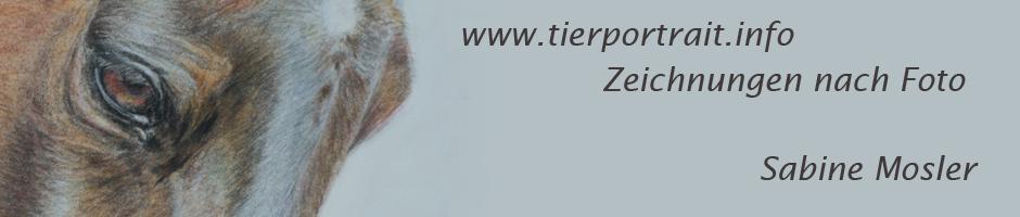 banner tierportrait Sabine Mosler