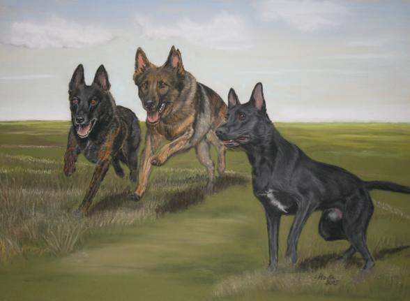 Hundezeichnung, Kombizeichnung dreier Hunde in Action