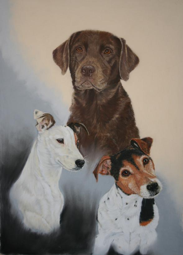 Hundezeichnung Labrador Retriever Jack Russel Terrier