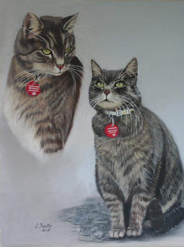 cat portrait Katzenportrait Katzenzeichnung Pastell