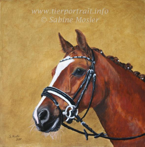 Pferdeportrait Pferdezeichnung Ölgemälde