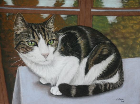 #Katzenzeichnung, #Katerportrait, #Katzenportrait